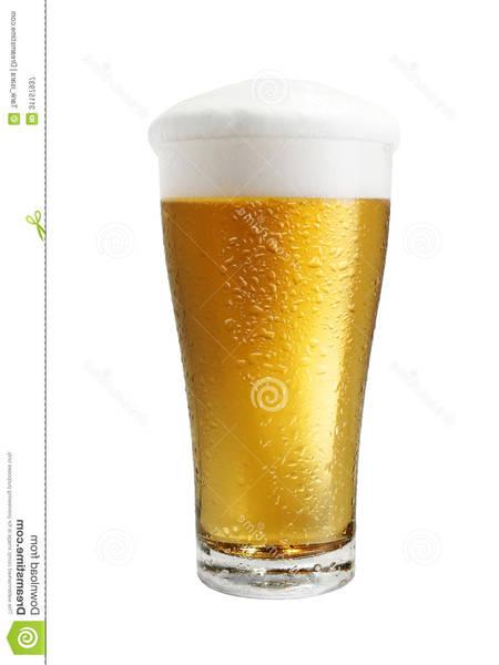 cerveza corona rd